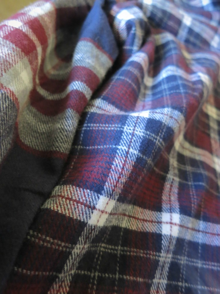 Blue & Red Flannel